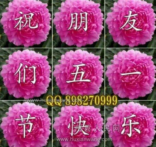 mmexport1525141708261.jpg