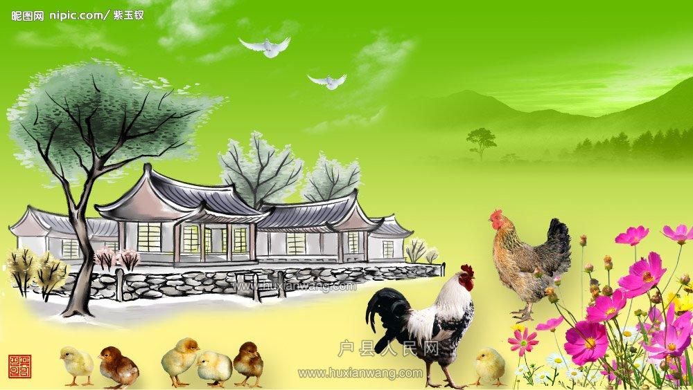 2504634_010832062_2.jpg